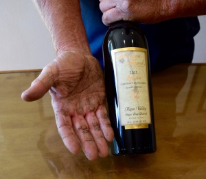 Tom's hands attest to the hard work he does here. They just finished building their own house in the vineyards, too.